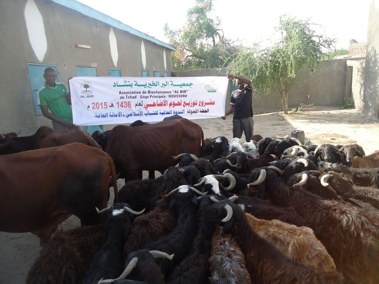 أضاحي البر لعام1436ه -2015